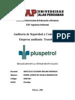 Informe de Auditoria Transber Pucallpa Febrero 2009