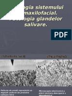 09_Patologia_oromaxilofaciala