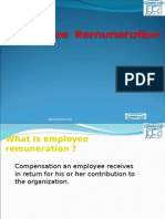 Employee Remuneration