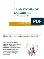 Tema 1. Anatomía de La Laringe. Parte VI.ppt