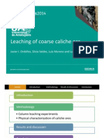 Leaching of Coarse Caliche Ore