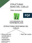 Estructuras cervicales profundas