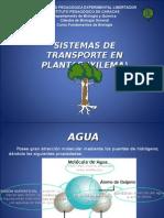 Sistemas de Transporte en Plantas1