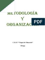 organizacion metodologica