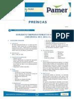 HP S2 Preincas