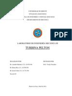 Informe de Turbina Pelton
