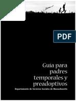 c-fp-ap-guide-sp