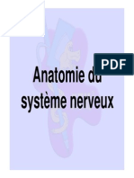 2008-2009 Anatomie Seance 9 Diaporama