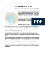 Introducing the Arctic Ocean