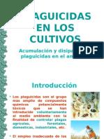Plaguicidas en Los Cultivos