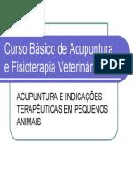 Curso Básico de Acupuntura e Fisioterapia Veterinária - Slides Em PDF