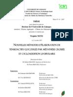 thèse Dr Virginie Neto
