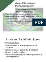 Subcultures(1).pdf