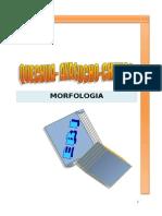 Morfología Quechua