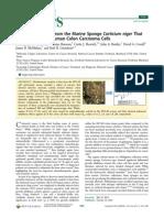 alcaloides de la esponja con actividad anticáncer