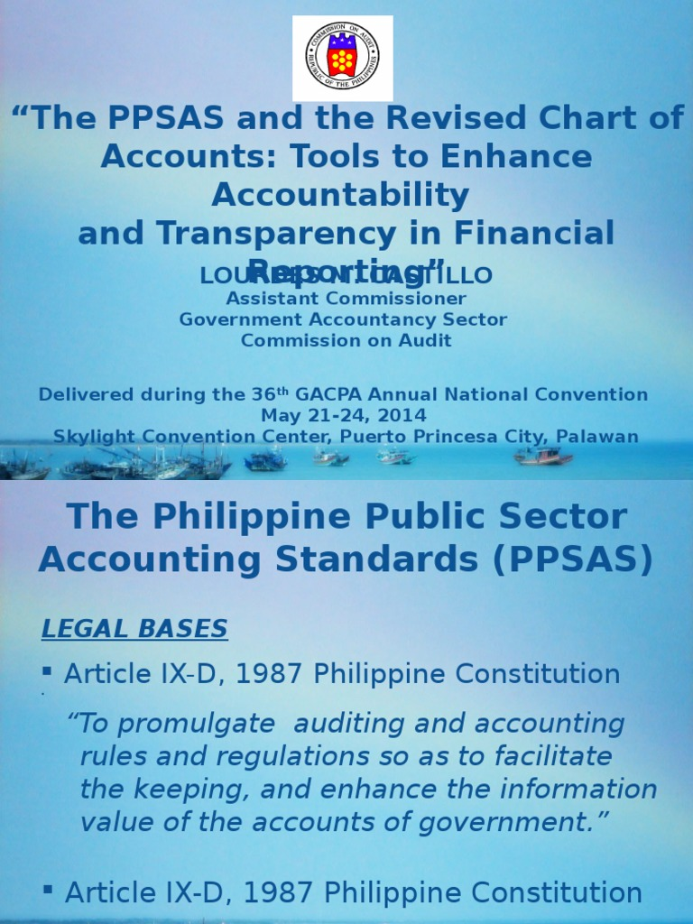 The Ppsas And The Revised Chart Of Accounts Financial Statement Intangible Asset