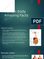 human body amazing facts
