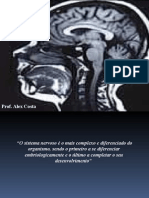 Anatomofisiologia Do Snc