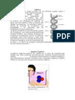 1. Quimica y Sus Ramas o Derivaciones