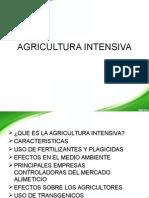 Agricultura Intensiva Terminado