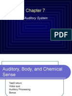 Auditory Processing.ppt