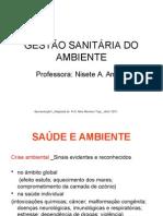 Gestaosanitaria Apresentacao1 NAA