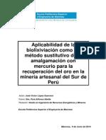 Aplicabilidad de la biolixiviación como un método sustitutivo de la amalgamación con mercurio para la recuperación del oro en la minería artesanal del Sur de Perú.pdf