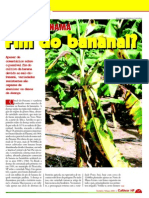 Fim do Bananal?