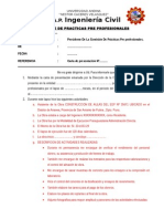 INFORME Practicas Pre-Profesionales IngCivil UANCV