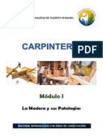 Modulo 1-Carpinteria (Diana)