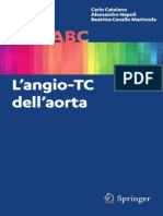 Angio Tc Dell'Aorta