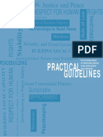ICPA - Practical Guidelines