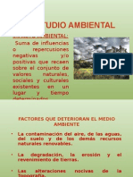 El Estudio Ambiental
