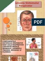 Sistemul respirator.pptx