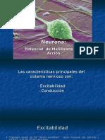 potencial-de-membrana-y-de-accion.ppt