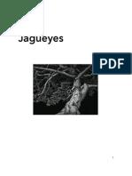 Jagüeyes