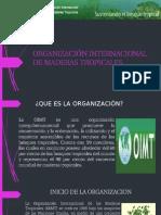 Organización Internacional de Maderas Tropicales