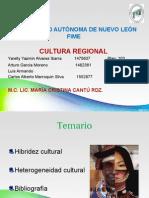 Heterogeneidad Cultural