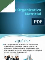 Modelo Organizativo Matricial