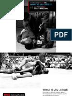 E Book What is Jiu Jitsu v101