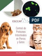 Contro de Protozoarios intestinales en perros y gatos