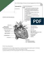 Bab 2-Peredaran Darah Dan Pengangkutan