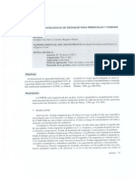WPSII REVISADO.pdf