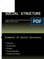 Social Groups and Structures