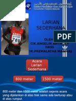 LARIAN SEDERHANA