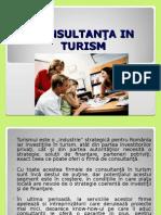 consultanta in turism.ppt
