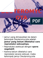 Deuteromycota ppt