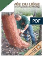 Guide levee du liege et calcul du rendement du chêne liège