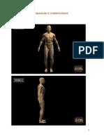 Imagem Comentario Imagem PDF