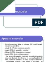 Bilanţ Muscular. Kinetoterapiet PowerPoint